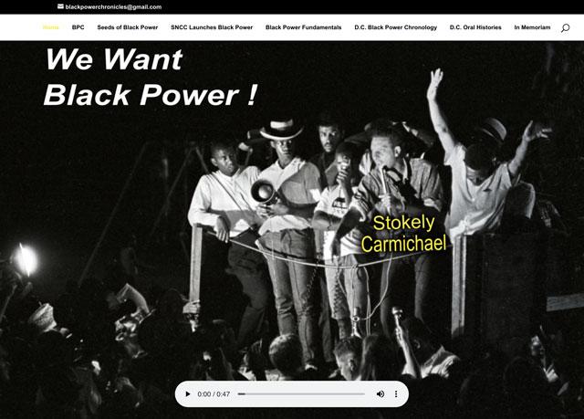 Black Power Chronicles